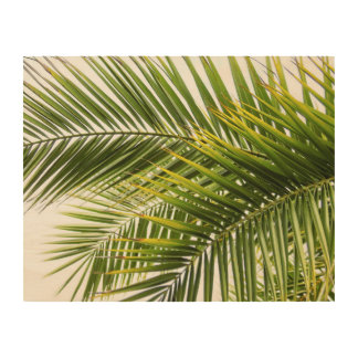 Palm tree leaves tropical nature photo wood wall art
