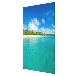 Palm tree lined beach, Tonga Canvas Print