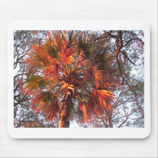 Palm Tree Mouse Pads