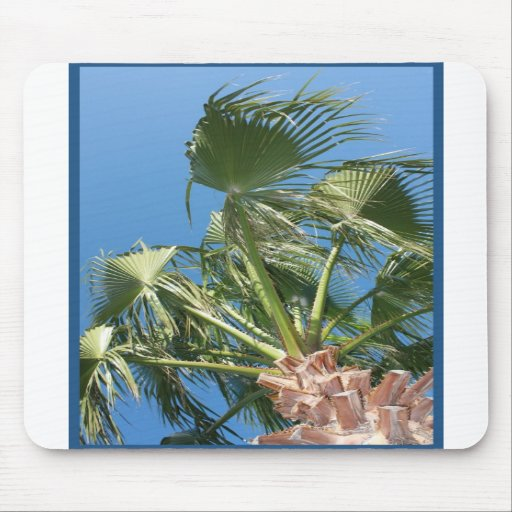 Palm tree mousepad - summer vacation