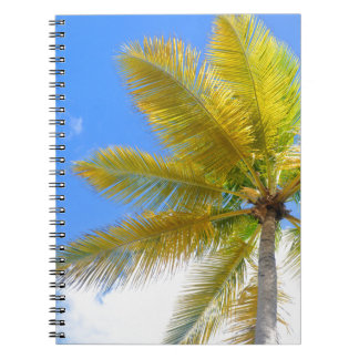 Palm tree note book