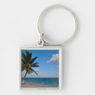 Palm Tree on a Beach Key Ring