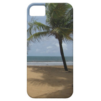 Palm Tree on the Beach Photo iPhone 5 Cover