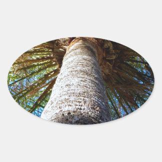 Palm Tree Oval Sticker