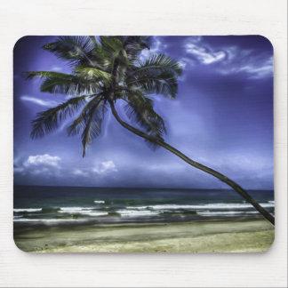 Palm Tree Paradise Mouse Pad