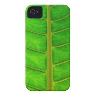 Palm Tree Print iPhone 4 Cases