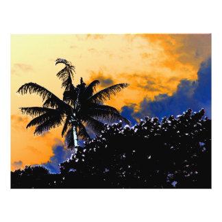 palm tree sea grapes florida blue sky graphic flyers