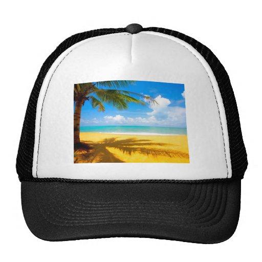 Palm Tree Shadows Hat