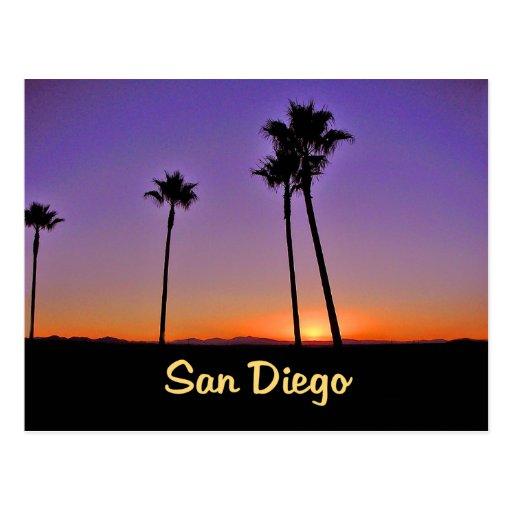 Palm Tree Silhouette In San Diego Postcard