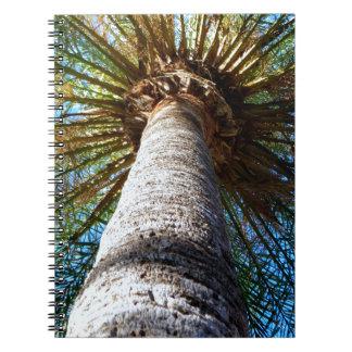 Palm Tree Spiral Notebooks