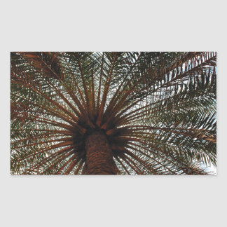 Palm tree rectangle stickers