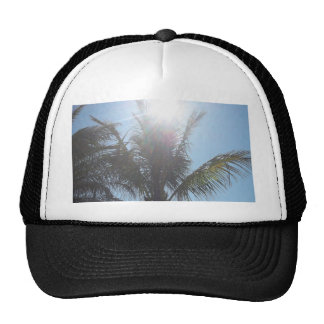 Palm Tree Summer Day Mesh Hats