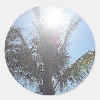 Palm Tree Summer Day Round Sticker