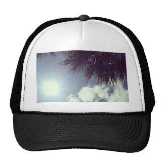 Palm Tree & Sun Cap