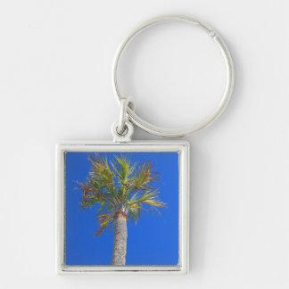 Palm Tree Sunny Blue Sky Key Chain