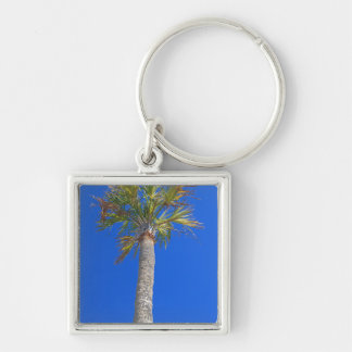Palm Tree Sunny Blue Sky Keychains