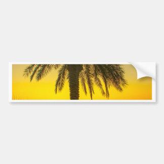 Palm Tree Sunrise Bumper Sticker