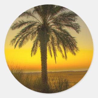 Palm Tree Sunrise Classic Round Sticker