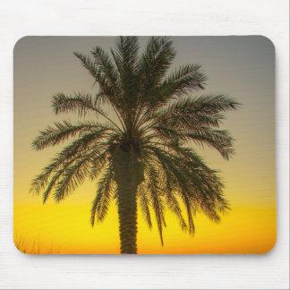 Palm Tree Sunrise Mousemat
