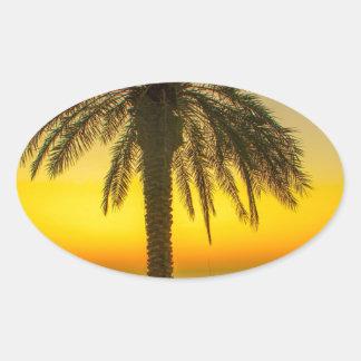 Palm Tree Sunrise Oval Sticker