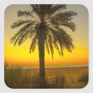 Palm Tree Sunrise Square Sticker