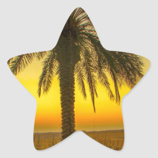 Palm Tree Sunrise Star Sticker