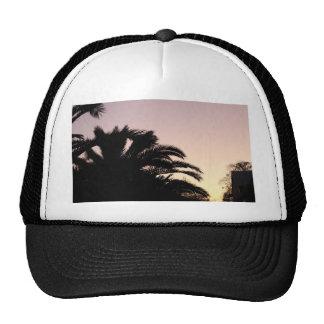 Palm Tree Sunset #2 Trucker Hats