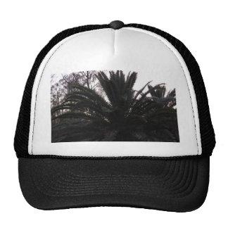 Palm Tree Sunset Trucker Hat