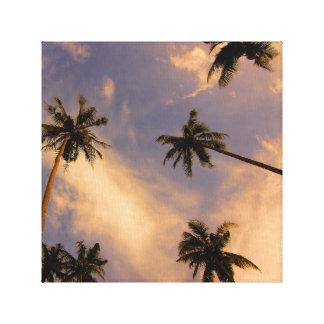 Palm tree tropical summer photo canvas print
