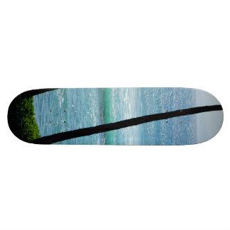 Palm tree with waves on a skateboard