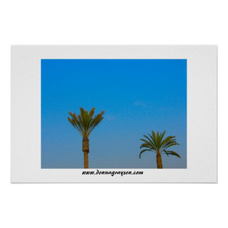Palm Trees and Blue Sky Poster
