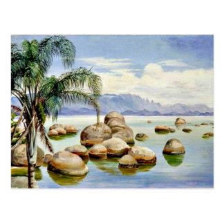 Palm Trees and Boulders in the Bay of Rio, Brazil Postcard
