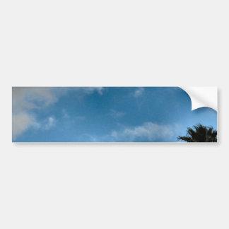 palm trees and sky car bumper sticker