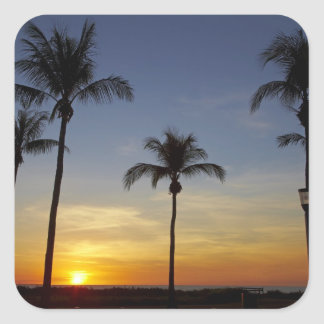 Palm trees and sunset, Mindil Beach Square Sticker