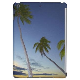 Palm trees and sunset, Plantation Island Resort
