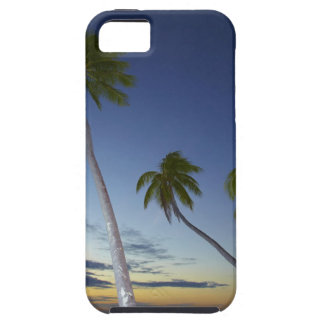 Palm trees and sunset, Plantation Island Resort iPhone 5 Cases