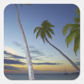 Palm trees and sunset, Plantation Island Resort Square Sticker