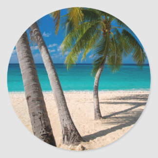 Palm trees and turquoise water along Seven-Mile Round Sticker