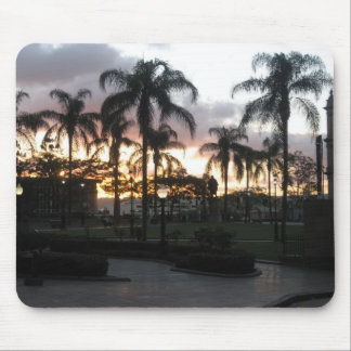 Palm Trees at Sunset Mouse Pad