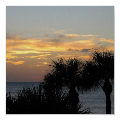 Palm Trees at Sunset Posters