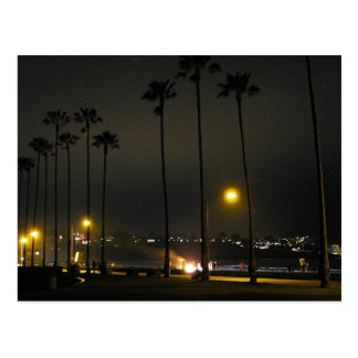 Palm Trees Beaches Night La Jolla Postcard