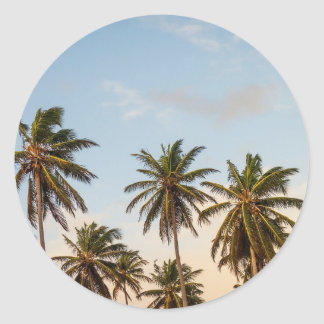 Palm Trees Classic Round Sticker
