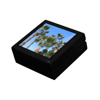 Palm Trees Gift Box