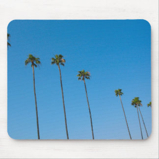 Palm Trees in a Row Mouse Pad
