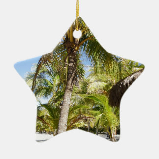 Palm Trees in Mexico Ceramic Star Decoration