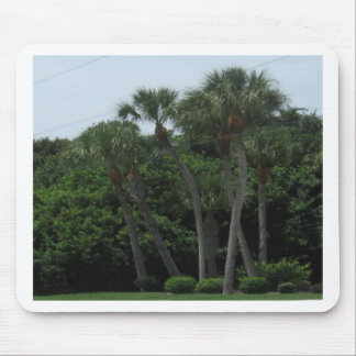 Palm Trees In The City Mouse Pad