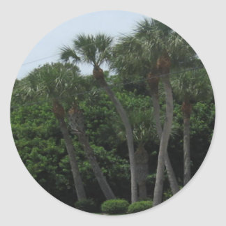 Palm Trees In The City Round Stickers