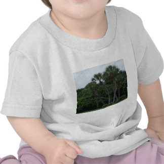 Palm Trees In The City Tshirts