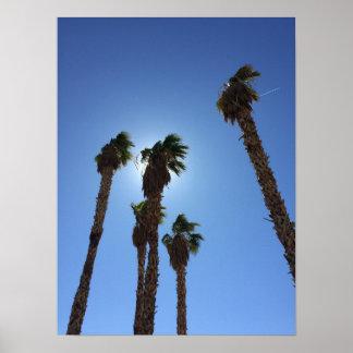 Palm Trees Las Vegas Poster