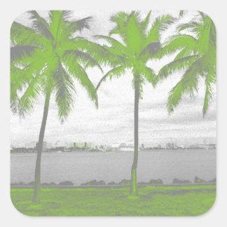 Palm Trees Miami, Florida Green Square Sticker